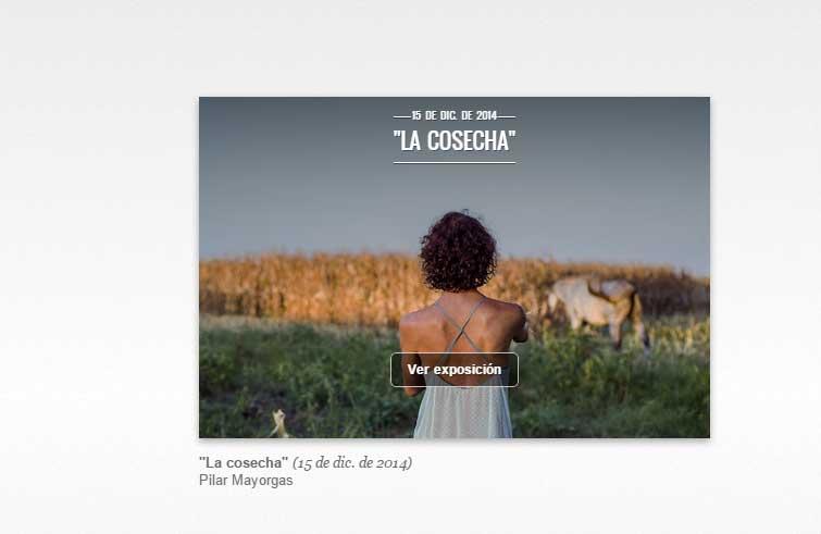 """""""La cosecha"""" (15 de dic. de 2014) Pilar Mayorgas"""